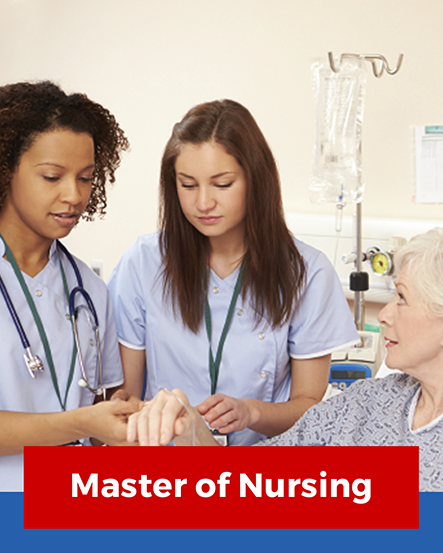Nursing Studies Brochure